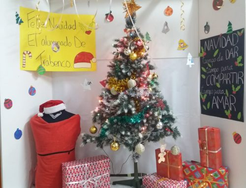 ESCAPARATE NAVIDEÑO