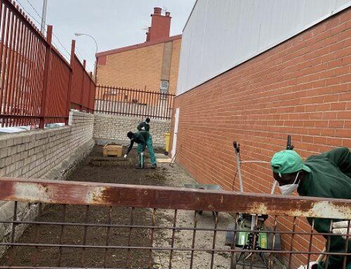 """Prácticas de la Escuela de Jardinería del Pozo""""Fundación Esperanza y Alegría"""""""