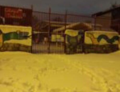 Fotos de la impresionante nevada en el colegio.